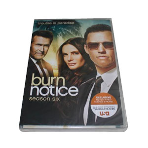 Burn Notice Season 6 DVD Box Set