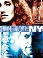 CSI New York Seasons 1-6 DVD Boxset