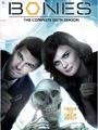 Bones Season 6 DVD Boxset