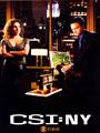 CSI: NY Seasons 1-8 DVD Box Set