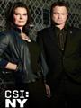 CSI: NY Season 9 DVD Box Set
