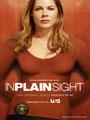 In Plain Sight Season 5 DVD Box Set