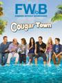 Cougar Town Seasons 1-3 DVD Box Set