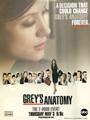 Grey's Anatomy Season 9 DVD Box Set