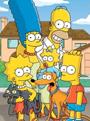 The Simpsons Season 25 DVD Box Set
