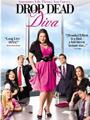 Drop Dead Diva Seasons 1-5 DVD Box Set
