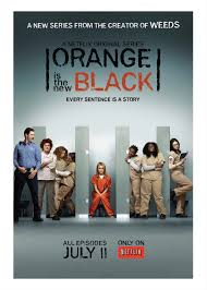Orange Is the New Black Season 1 DVD Box Set