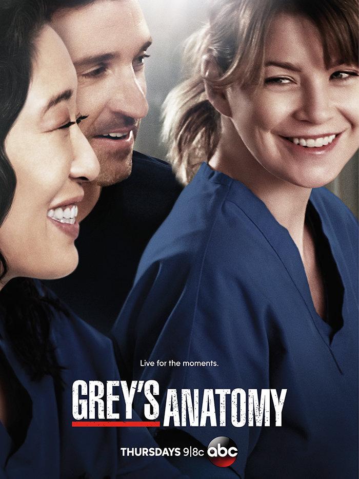 Grey's Anatomy Seasons 1-10 DVD Box Set