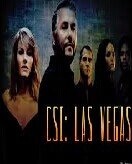 CSI Lasvegas Seasons 1-14 DVD Box Set