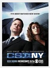CSI: NY Seasons 1-9 DVD Box Set