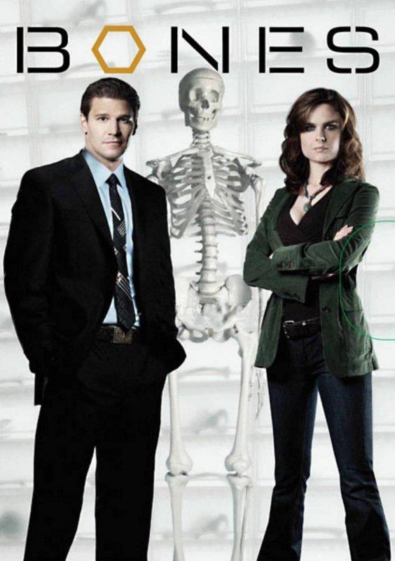 Bones Seasons 1-9 DVD Box Set